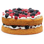 Delicious 4 Berries Torte To
