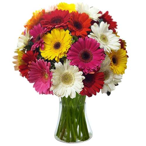 Classic Pink and White Gerberas and Fresh Seasonal Flowers in a Vase To Fukuoka