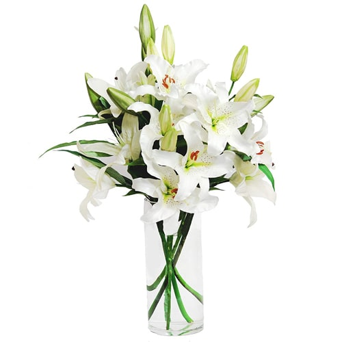 Classic and Mystical Allure of Lilies in a Vase