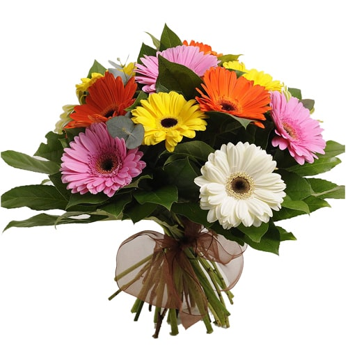 Traditional 12 Mixed Gerbera Bouquet with Romantic Thrill To