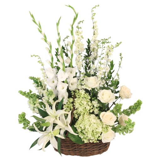 Beautiful White Flowers with a Memorable Love