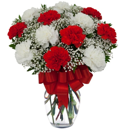 Mesmerizing White and Red Carnations To
