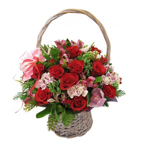 Charming Fresh Pink and Red Flowers with Striking Affections
