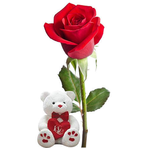 Elegant Lasting Memories Single Red Rose and Teddy Bear To Sorachi