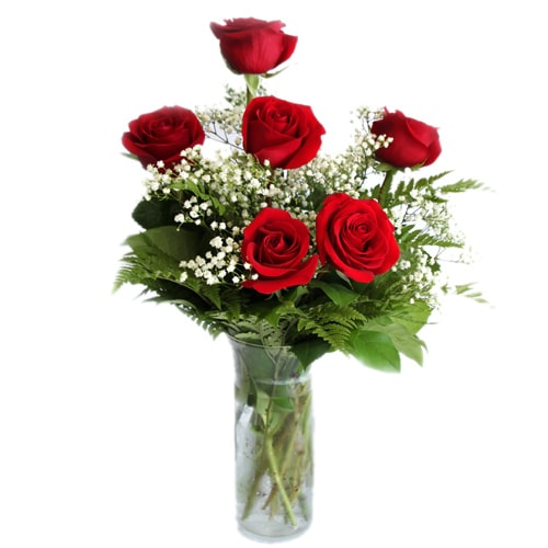 Treasured Love Delight 6 Red Roses in a Vase