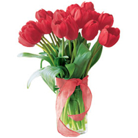 Enchanting Bouquet of 10 Red Tulip To