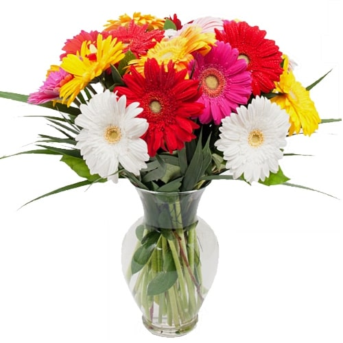 Expressive Gerberas in a Vase for Sweet Surprise To Fukuoka