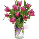 Classic 10 Pink Tulips with Impression of Love To