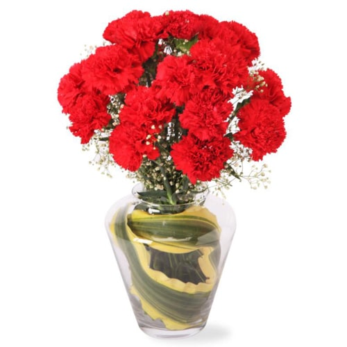 Gorgeous Twelve Carnation Delight with Vase To